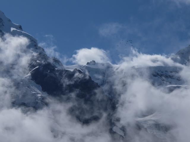Swiss-Grindelwalt-18