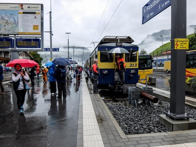 Swiss-Grindelwalt-3