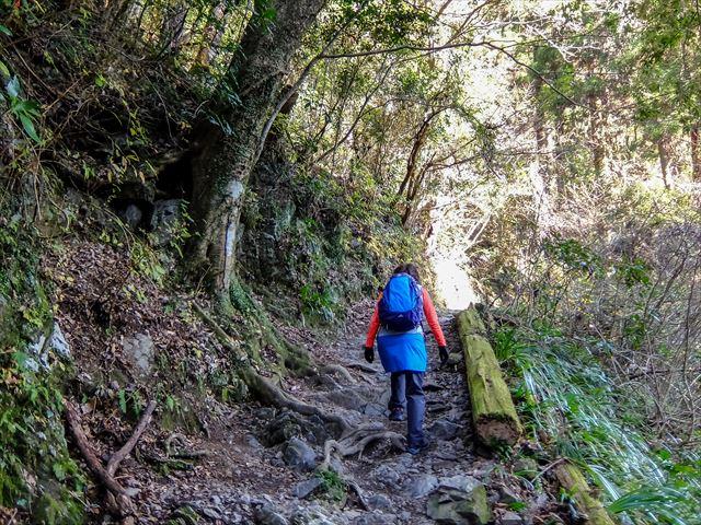 高尾山への登山道