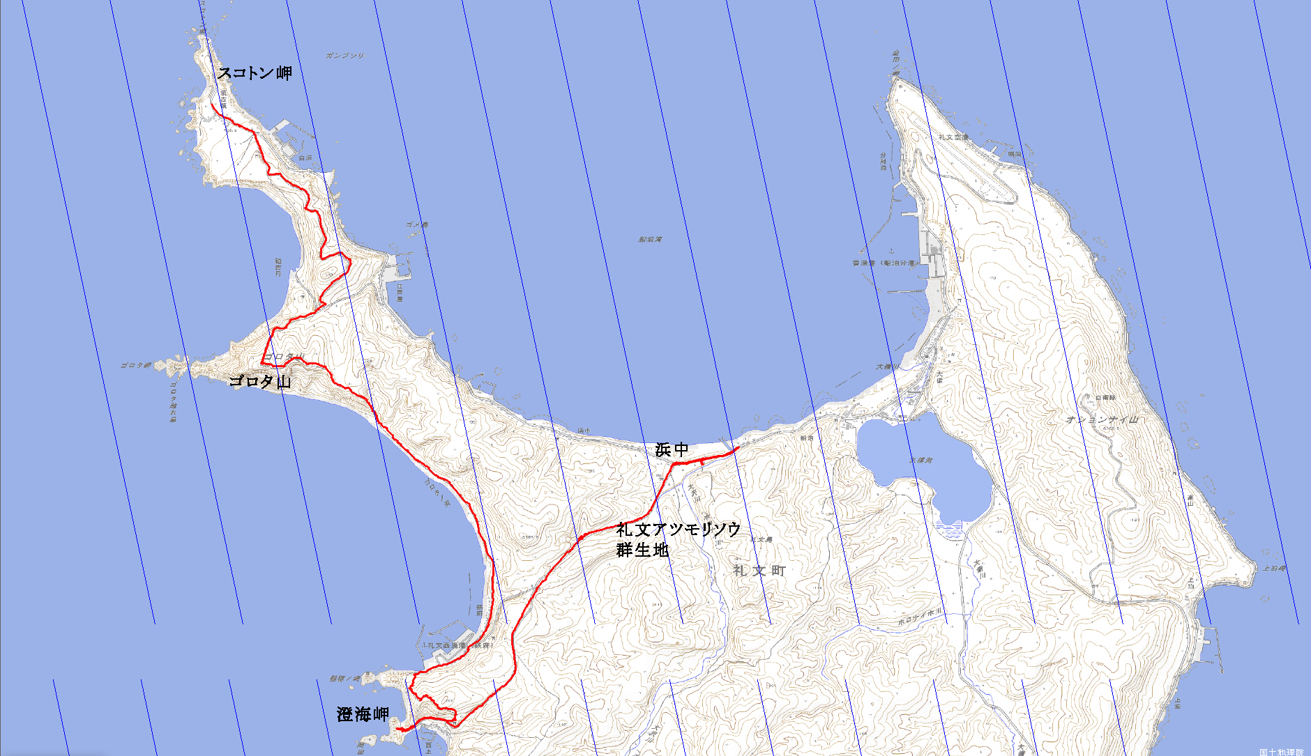 礼文島岬めぐりコース
