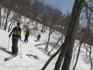 tyoukaisan-ski1