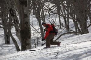nabekura-ski1