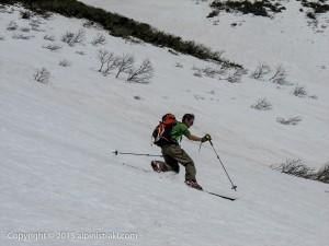 tyoukaisan-ski2